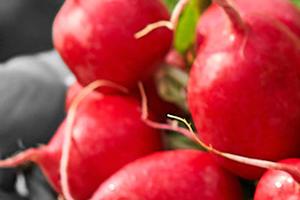 液剤 バスタ スギナも枯らす除草剤「バスタ」の特徴・効果・使い方を詳しく解説さ